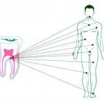 La prevención, clave para una buena salud bucodental